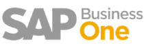 sap business one-1