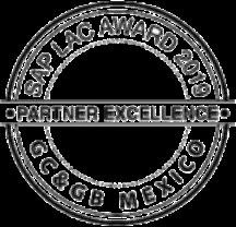 SAP-partner-excelence_